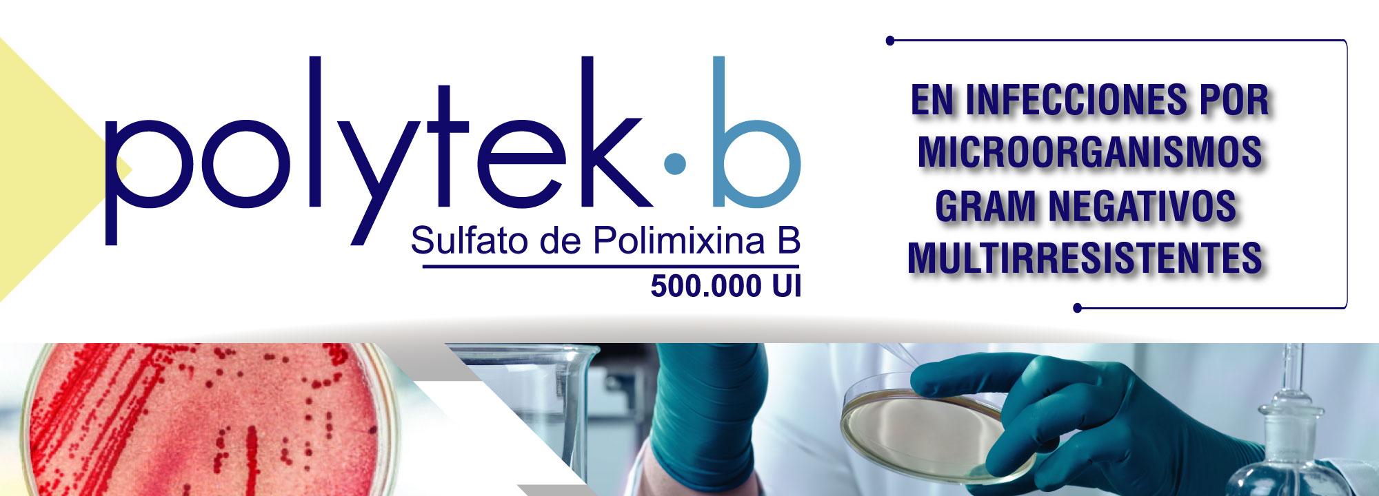 Polimixina B